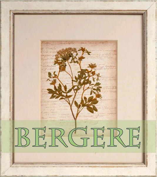 BergereBotanical.600