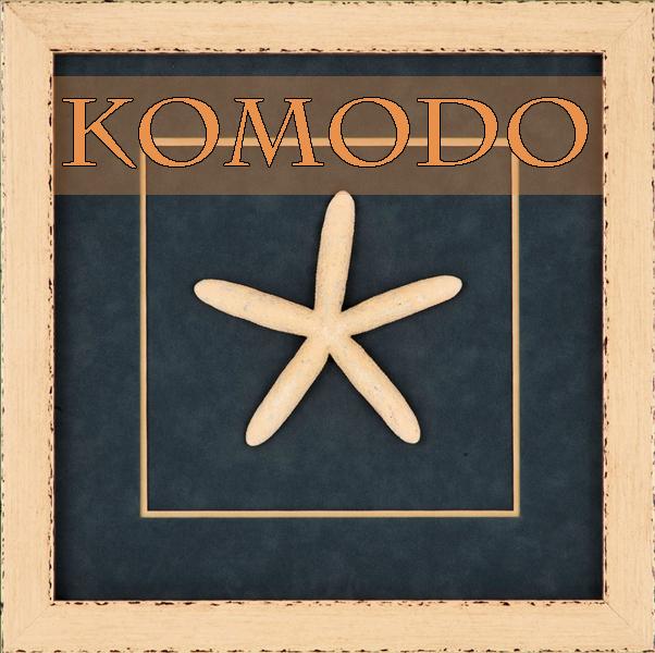 Komodo.600